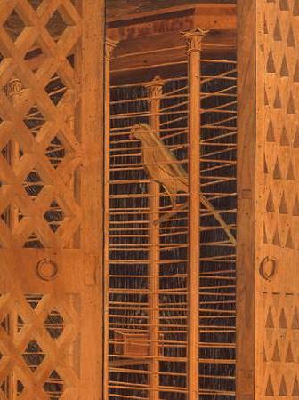 il pappagallo nella gabbia ottagonale